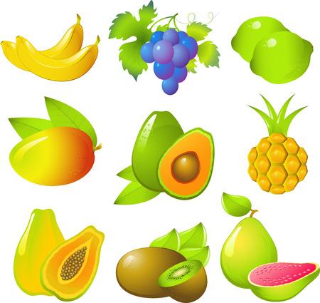 guayaba: Vector im�genes de hermosos frutos ex�ticos: los pl�tanos, uvas, lim�n, mango, aguacate, pi�a, papaya, kiwi y la guayaba! Aislado en blanco.