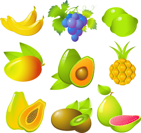 Vector images of beautiful exotic fruits: bananas, grapes, lime, mango, avocado, pineapple, papaya, kiwi and guava! Isolated on white. Vector