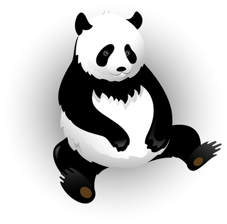 wild asia: Vectors pandas and bamboo