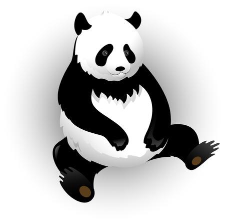 sit shape: Vectors pandas and bamboo
