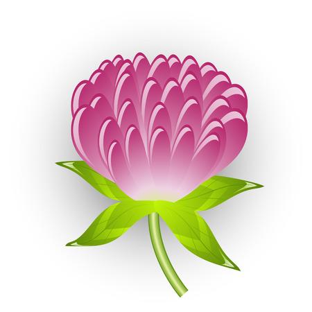 Vectors clover flower. Isolated on white. Stock Vector - 5233255