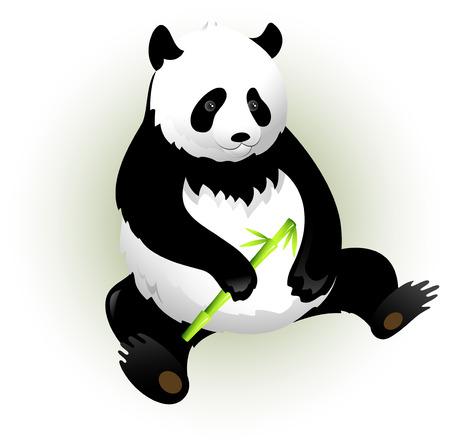 oso panda: Vectores panda con bamb�. Aislado en blanco.