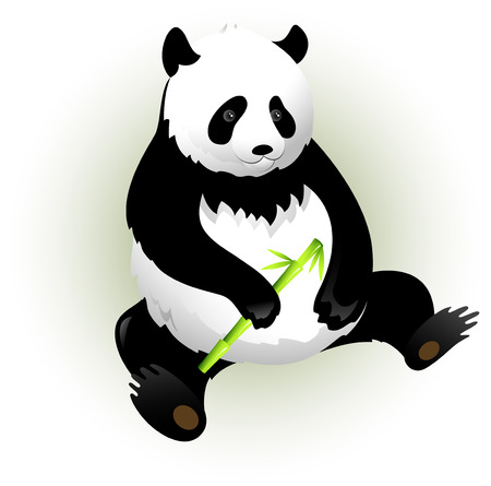 Vectors panda with bamboo. Isolated on white. Vector