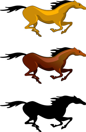 A horse running gallop. Isolated on white.