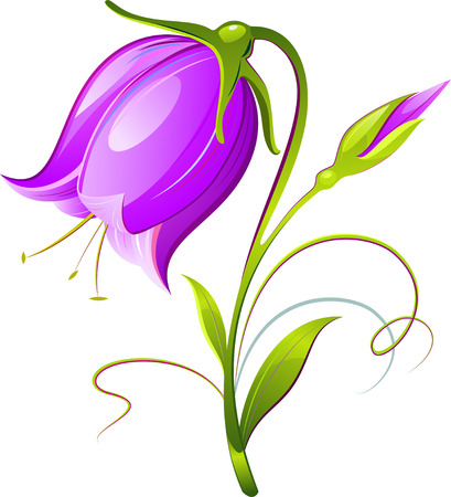 Vector Bell-flower. Decorative. Isolated on white. 8