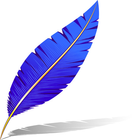 Vector feather. Isolated on white. 8 Stock Vector - 5474204