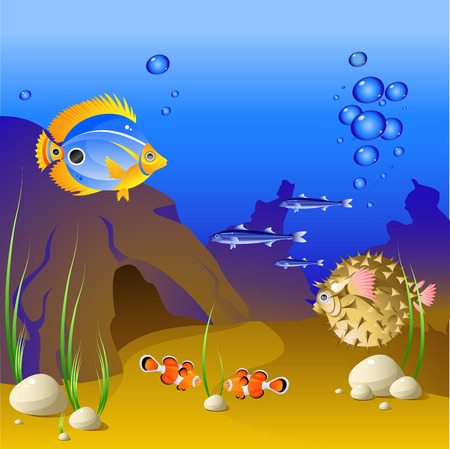 The underwater world of tropical fish. Vector