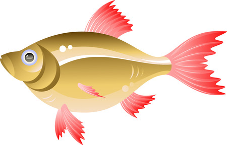 Vector fish. Isolated on white. EPS 8 Stock Vector - 6157273