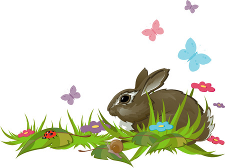 Rabbit in grass. Isolated. EPS 8 Vector
