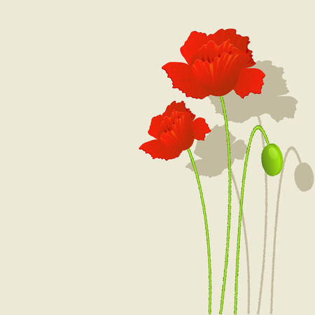 Background with red Poppies. EPS 8 Vector