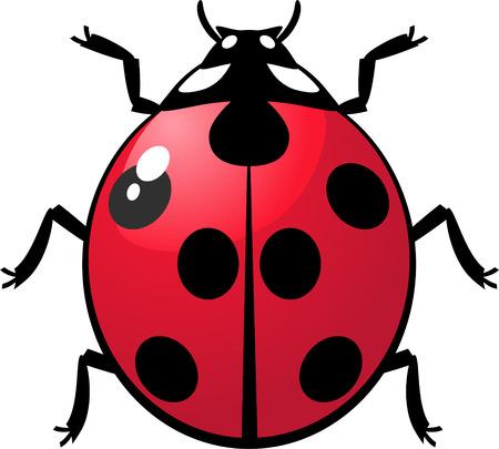 single woman: Ladybug