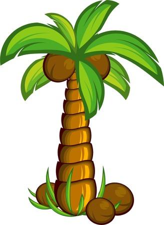 feuille arbre: Palmier. EPS 8 Illustration