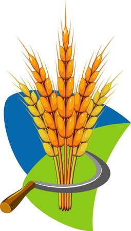 Sheaf of wheat and sickle. illustration.