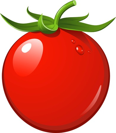 eps 8: Ripe tasty tomato on a white background. EPS 8
