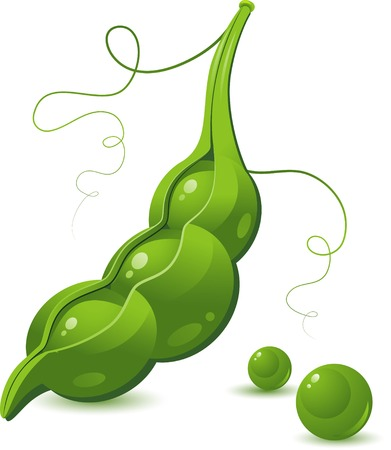 Pea Pod over white. Vector ilustration. EPS 8