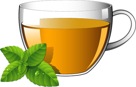 máta: Glass cup of tea with mint leaves. Over white.