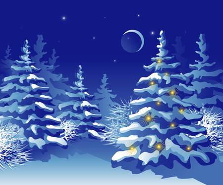 Winter Christmas forest at night.   Vector