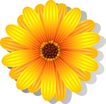 Beautiful yellow Gerber Daisy over white. EPS 8 Stock Vector - 9640943