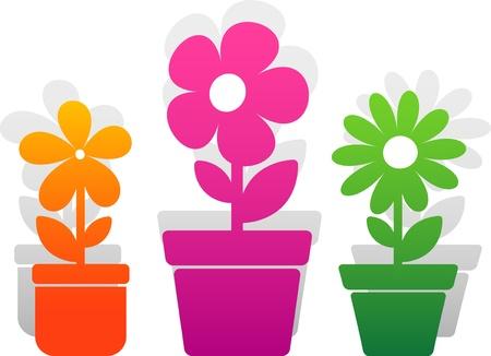 Three flower over white.  Illustration