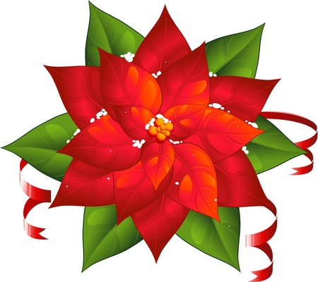Red poinsettia isolated over white. EPS 8 Vector