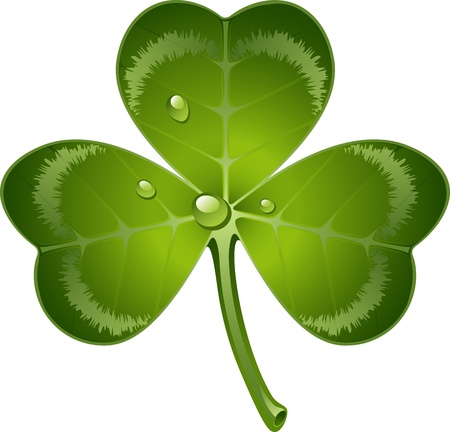 three leaves: clover leaf over white.