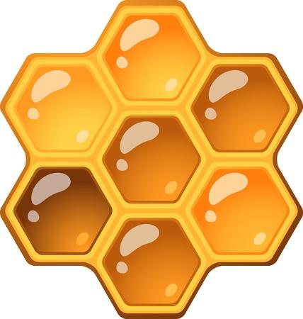 Honeycomb über weißem EPS 10 isoliert