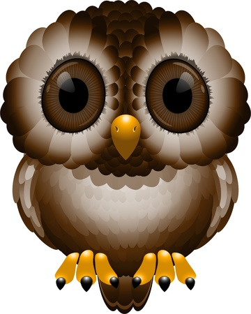 Night Owl over white  Vector