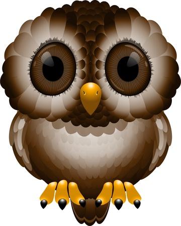 Night Owl over white