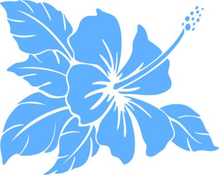 白い背景の上のハイビスカスの花のシルエット