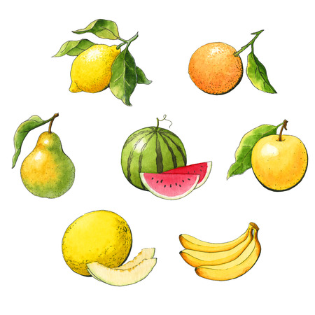 Watercolor set fruit on a white background