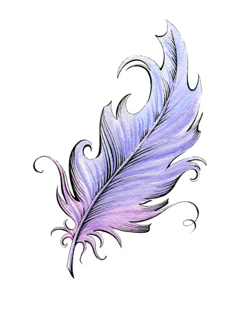 watercolor pen: Feather  Watercolor illustration on the white background Stock Photo