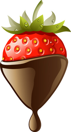 Chocolate Covered Strawberry. Vector illustration on the white background. Vector