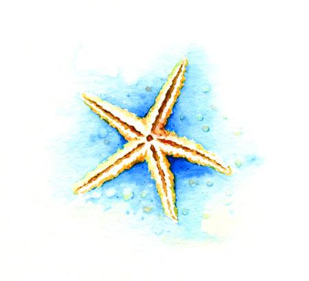 Starfish. Watercolor illustration 写真素材