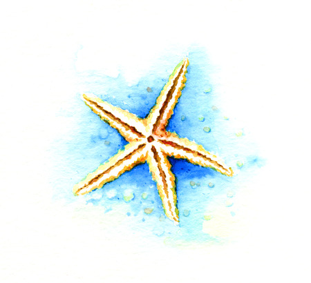 saltwater: Starfish. Watercolor illustration Stock Photo