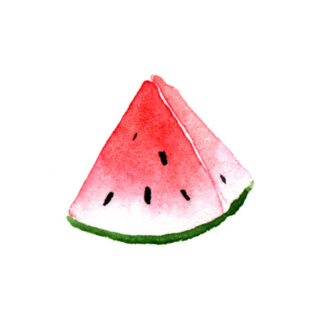 pulpy: Slice of watermelon. Watercolor illustration on a white background