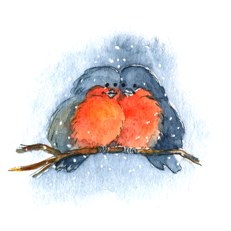 Bullfinch on a branch. Watercolor illustration