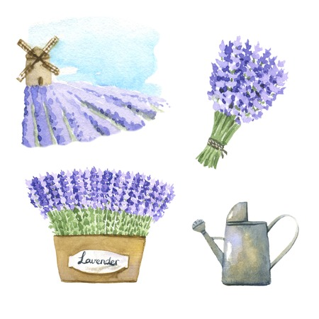 watering pot: Set of lavender watercolor elements. Stock Photo