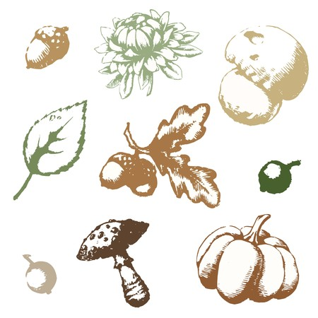 Set of vector images on the theme of autumn, eps 10