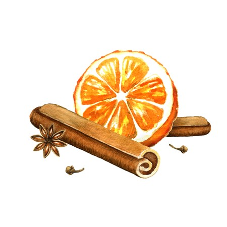 cloves: Slice of orange, cinnamon and star anise. Watercolor illustration on a white background