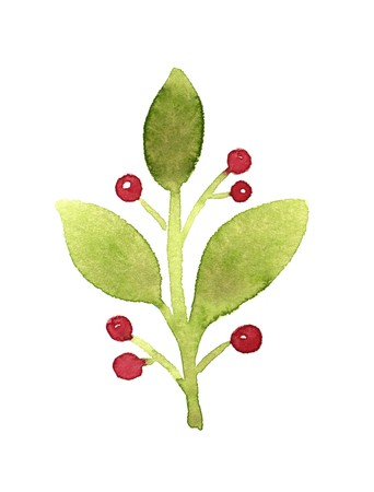 red berries: Green branch with red berries. Watercolor illustration