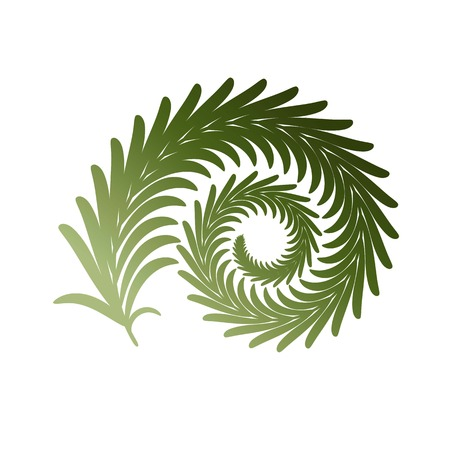 Twig fern curl. Vector image isolated on white. Eps 10