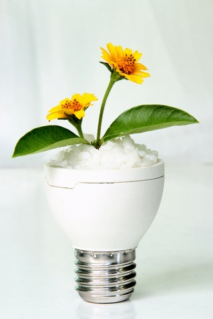 Waste materials. The invention is a vase of flowers