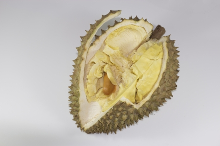 Durian fruit popular in Thailand Stock Photo - 15285336