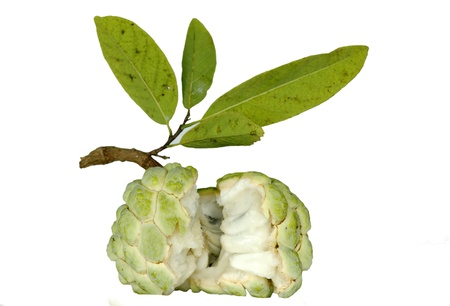 Custard apple fruit is delicious  Are perennial  Has grown in Thailand