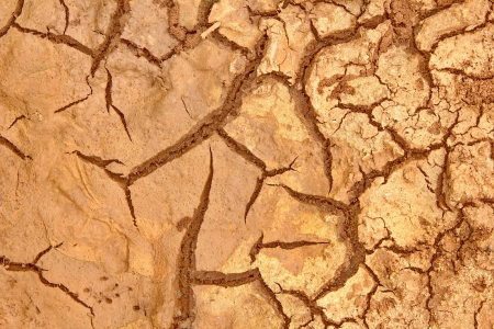 Cracked soil caused by drought. Rain does not fall seasonal summer outdoors.