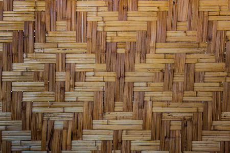 antecedents: bamboo background