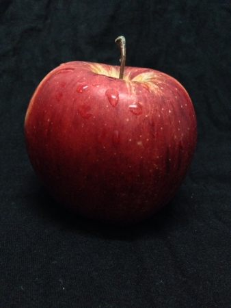 Apple on black  Stock Photo