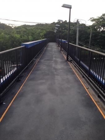 metallic: Overpass in city