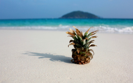 pineapple on beach photo