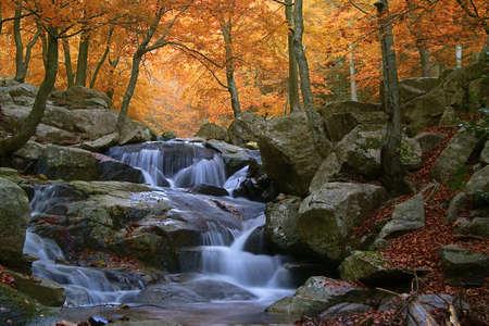 naturaleza: Cascada en el parque natural del Montseny (Barcelona-Espa�a) Foto de archivo